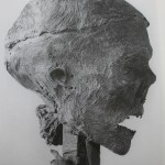 Cromwell's head before it was buried at the chapel in Sidney Sussex College, with thanks to the college