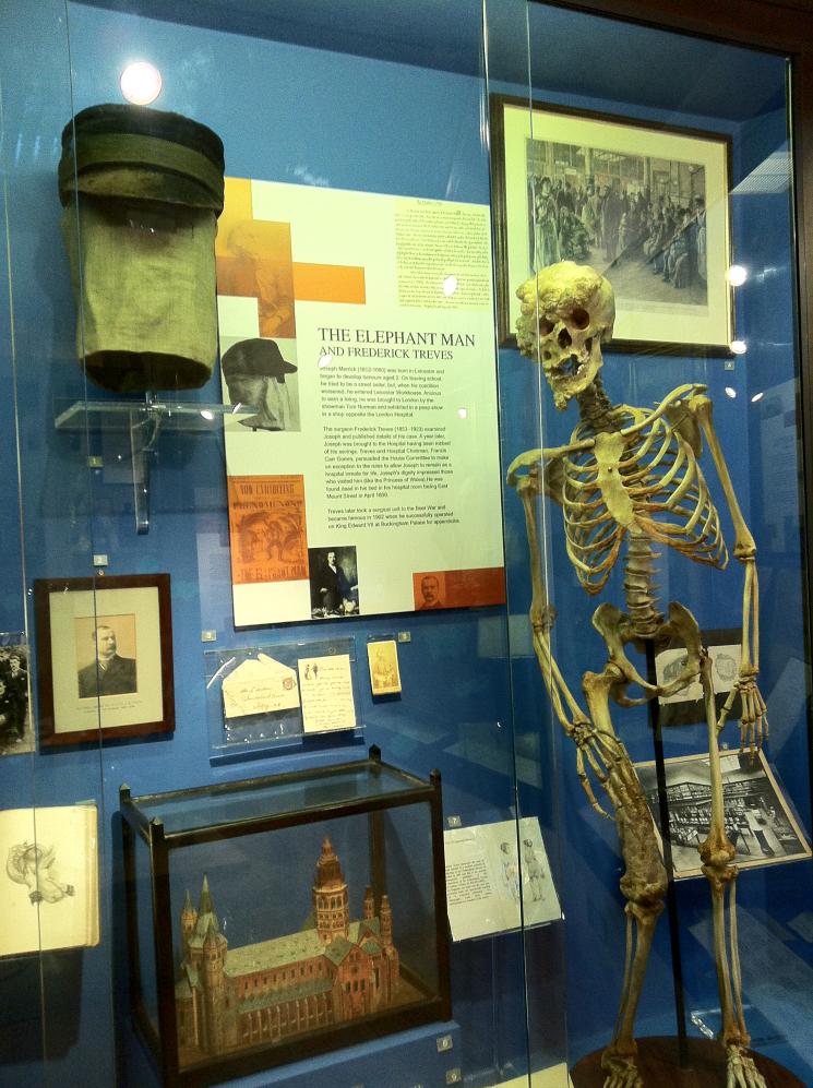 Merricks Skeleton and Cap